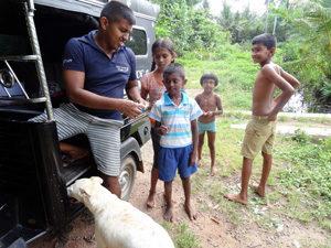 Aufklärungsarbeit Hunde Sri Lanka