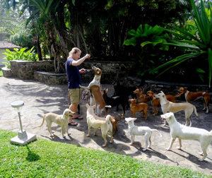 Hilfe für Hunde in Sri Lanka