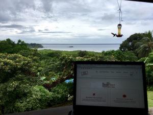 Workaway Panama
