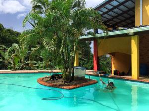 Workaway Panama Pool