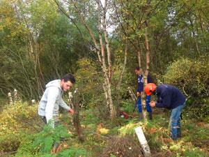 Freiwilligenarbeit Schottland
